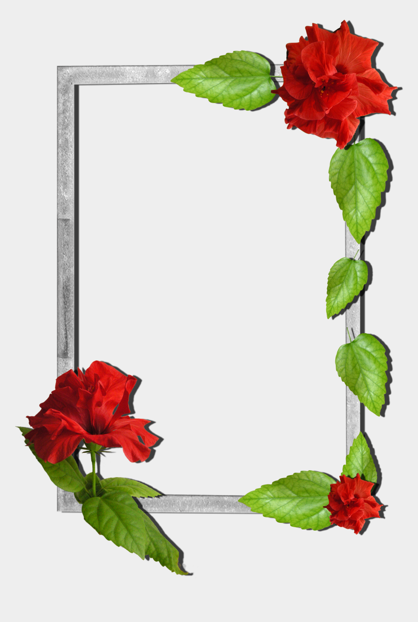 clip art borders flowers rose, Cartoons - Flower Love Photo Frames Free Download