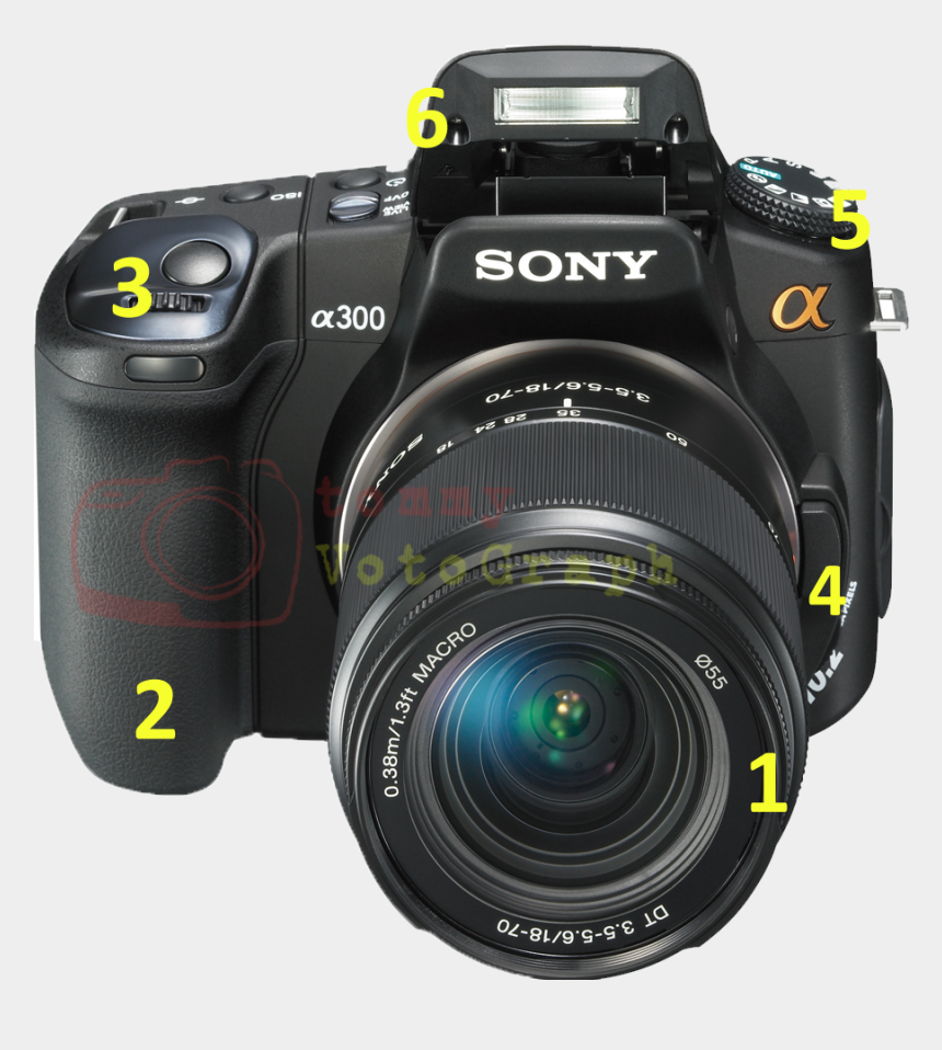 gambar kamera dslr clipart, Cartoons - Sony Alpha Dslr A300 Slr Digital Camera