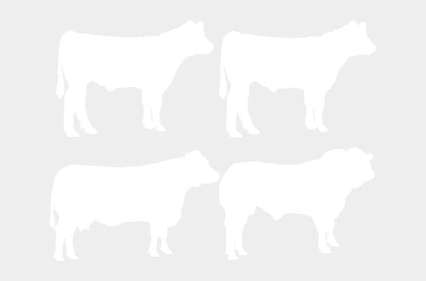 beef cow clipart black and white, Cartoons - Dairy Cow