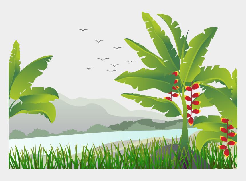 clip art of tree seedlings, Cartoons - Banana Leaf Vector Png
