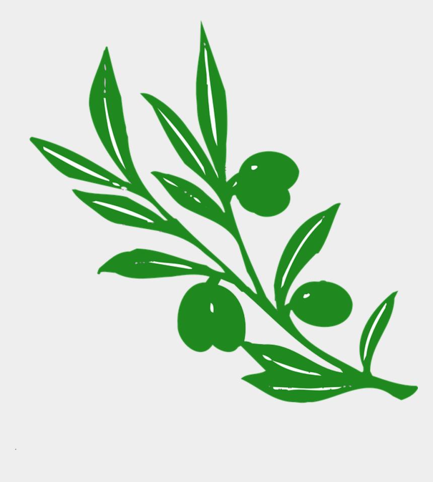 locust leaf clipart, Cartoons - Olive Tree Branch