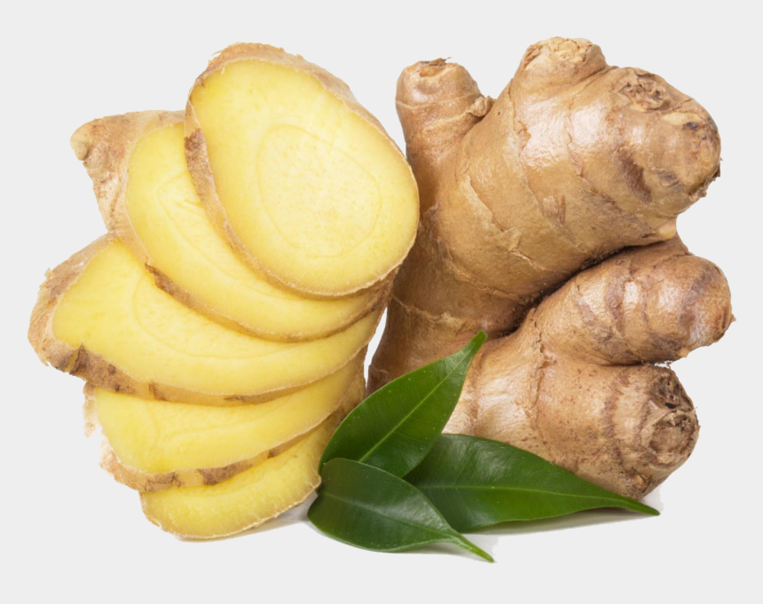 ginger clipart png, Cartoons - Ginger Medicinal Uses