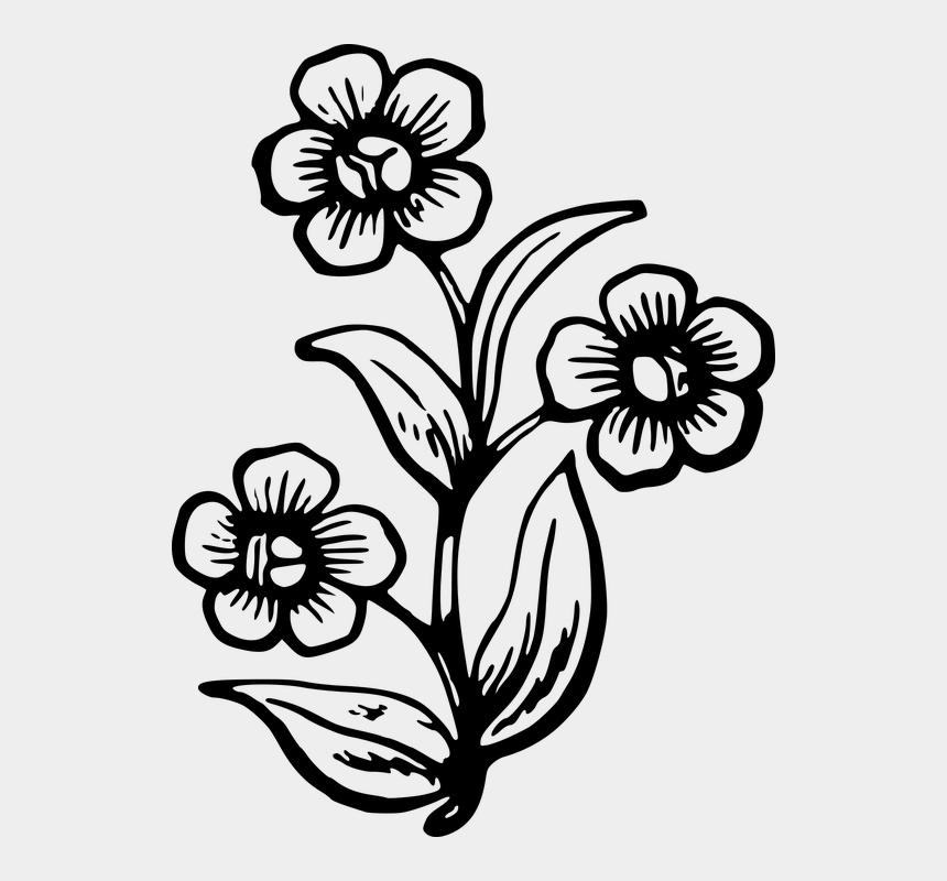 Draw A Big Flower Cliparts Cartoons Jing Fm,Boneless Ribs In Oven