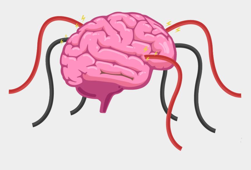 human brain images clipart, Cartoons - Three Main Part Of Brain
