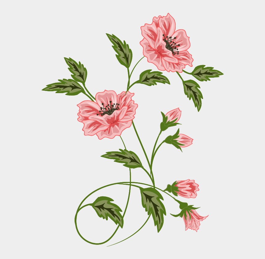 floral clipart, Cartoons - Abs Vector Floral - Frames Flowers