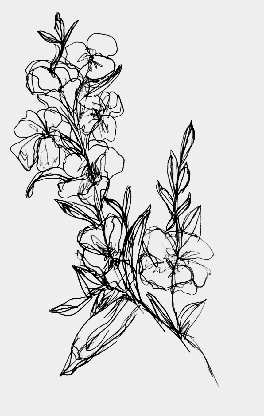 dandelion clip art, Cartoons - Dandelion Clipart Wind Drawing - Simple Flower Branch Drawing