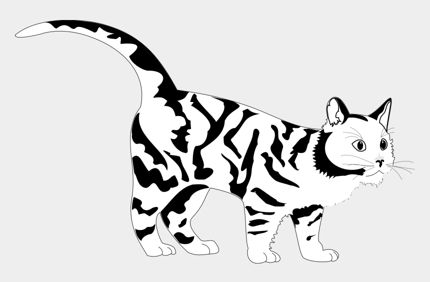Tiger Cat Black White Line Art Coloring Sheet Colouring Black And White Cat Colouring Pages Cliparts Cartoons Jing Fm