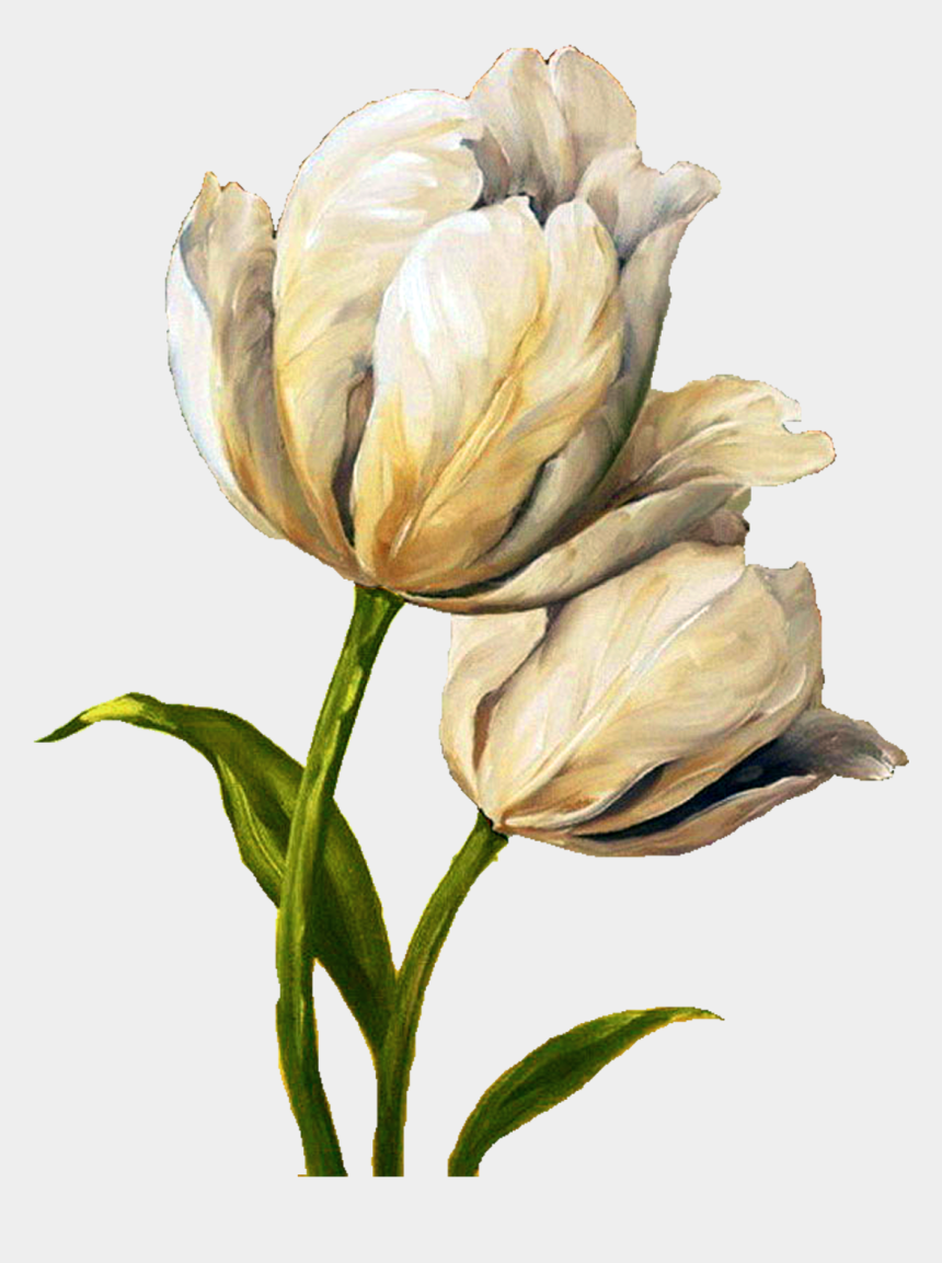 tulip clipart, Cartoons - Decoupage Flower, Flower Painting, Flower Painting - Watercolor Painting