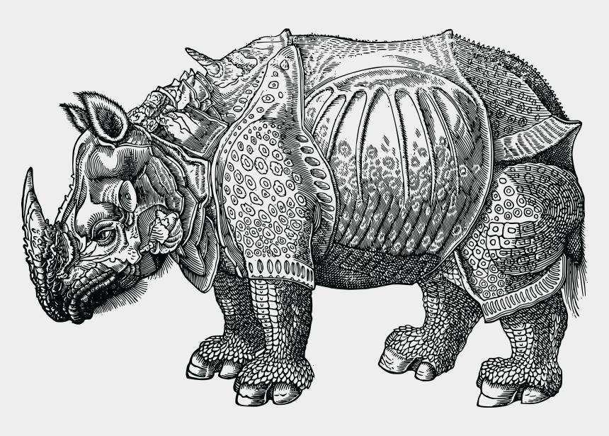 rhino clipart, Cartoons - Jpg, Png, Eps, Ai, Svg, Cdr - Reverse Copy Aftter Dürer's Rhinoceros