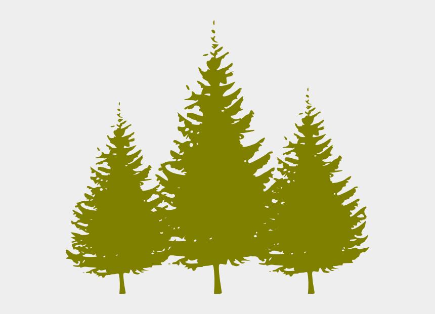 free clip art evergreen trees, Cartoons - Pine Tree Clipart Free