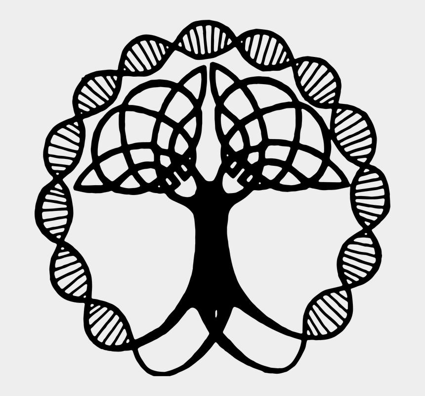 tree of life clip art, Cartoons - Tree Of Life, Transparent, Silhouette, Family Tree - Celtic Tree Of Life