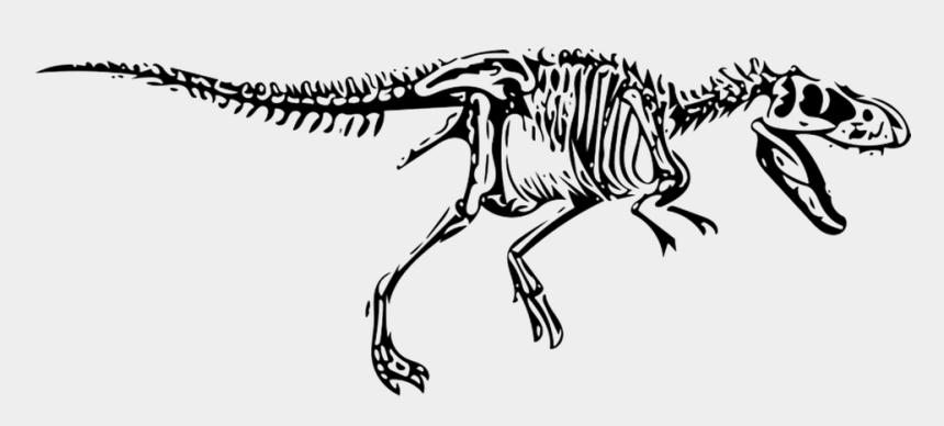 t rex clipart, Cartoons - Dinosaur, T-rex, Tyrannosaurus, Fossil - T Rex Png Fossils