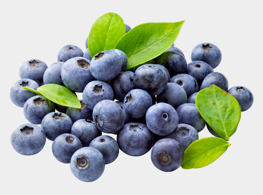 blueberry clipart, Cartoons - Blueberry Png Free Download - Blueberries Png
