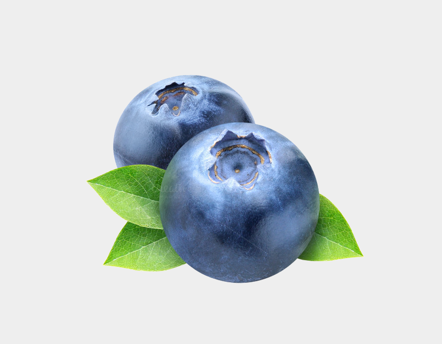 Blueberry Png Photos - Blueberry Clipart No Background ...