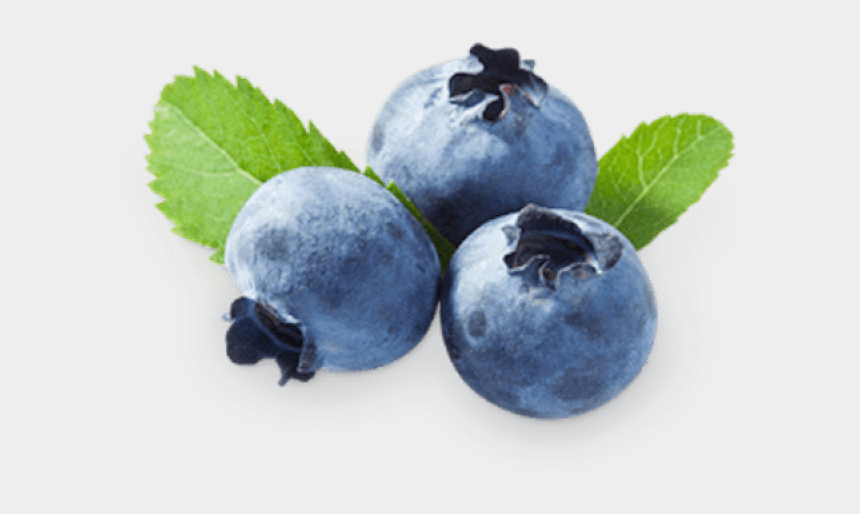 blueberry clipart, Cartoons - Blueberry Clipart Juniper Berry - Transparent Background Blueberry Png