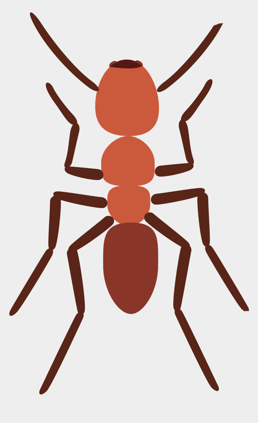 ants clip art, Cartoons - Image Stock Ants Spider Scout Ant Explore Pictures - Illustration