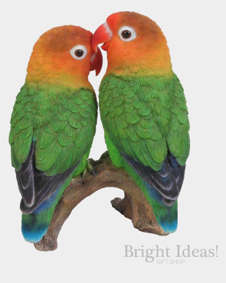 lovebird clip art, Cartoons - Love Birds Exotic True Life Vivid Arts Lovebirds - Logo Love Bird Hd