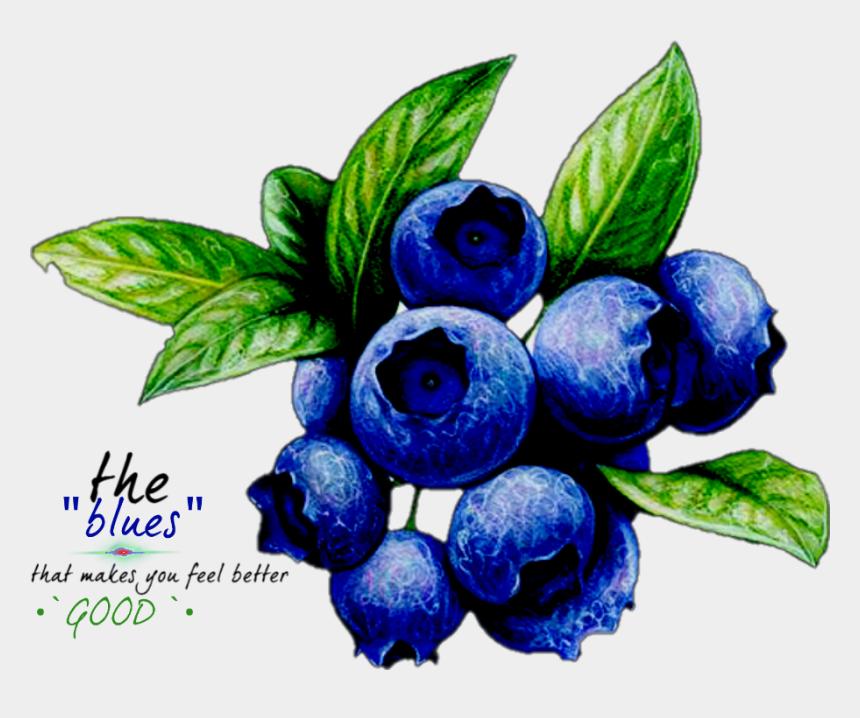 blueberry clip art, Cartoons - The Blues That Makes You Feel Good - Frutas De Lapices De Colores Blueberrys
