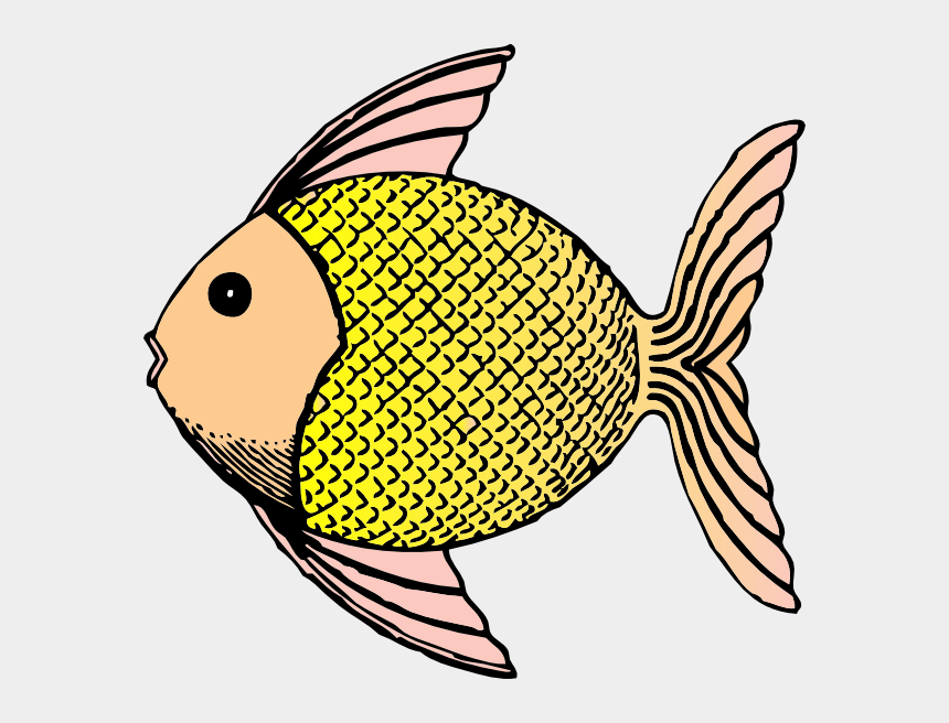 scale clipart, Cartoons - Tropical Fish With Scales Clip Art At Clker - Fish Clip Art