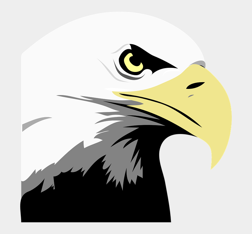 """head clipart, Cartoons - Download Free """"eagle Head Clipart"""" Png Photo, Images"""