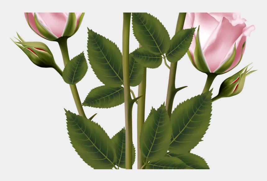 rose bouquet clip art black and white, Cartoons - White And Pink Rose Bouquet Transparent Png Clip Art - Transparent Flower Bouquet Vector