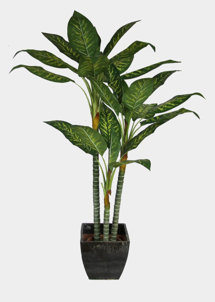 flower pot clipart, Cartoons - Office Plant Png Transparent Background - Plant Cut Out Png