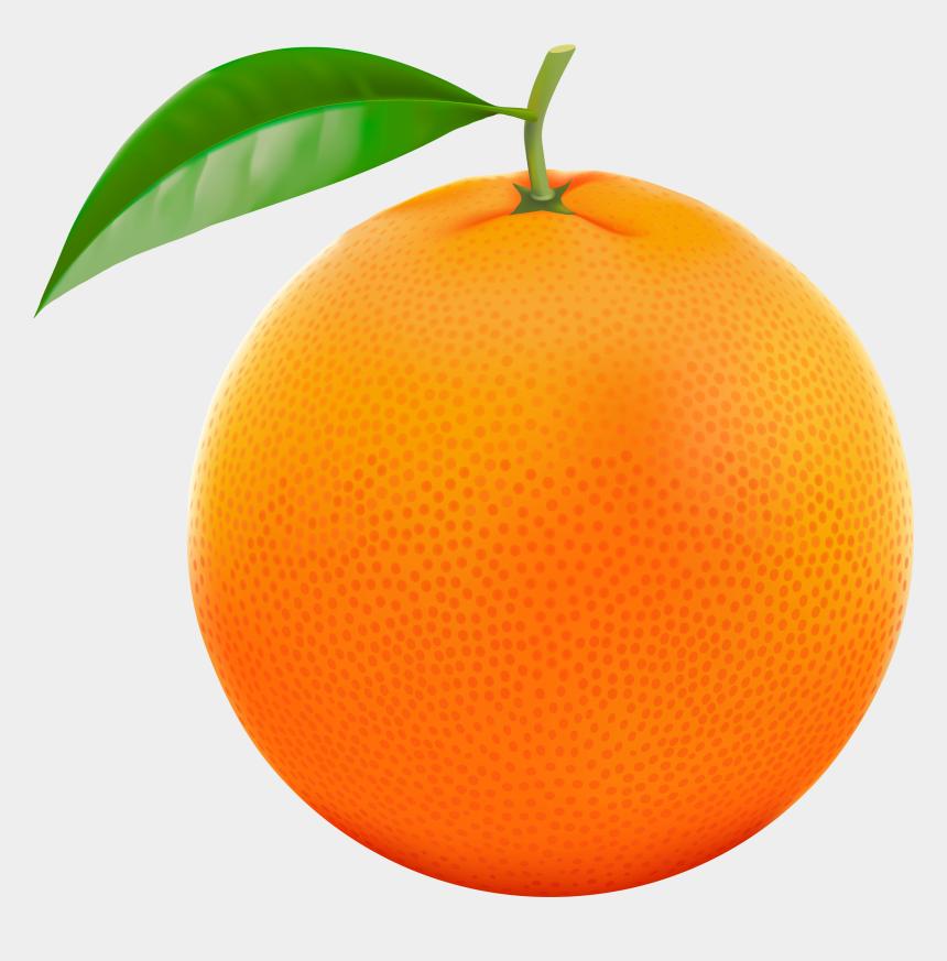 orange clipart, Cartoons - New Images 2018 Orange Clipart Transparent Background - Orange Clipart