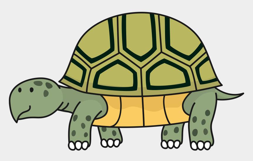 desert clipart, Cartoons - Turtle Reptile Desert Tortoise Russian Tortoise Gopher - Tortoise Clipart