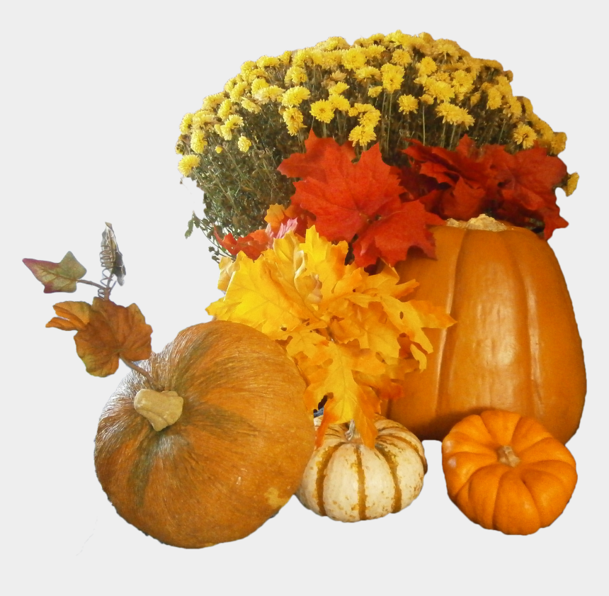 free thanksgiving clipart, Cartoons - Free Thanksgiving Day Png Images - Thankful Pumpkin Transparent Background Png