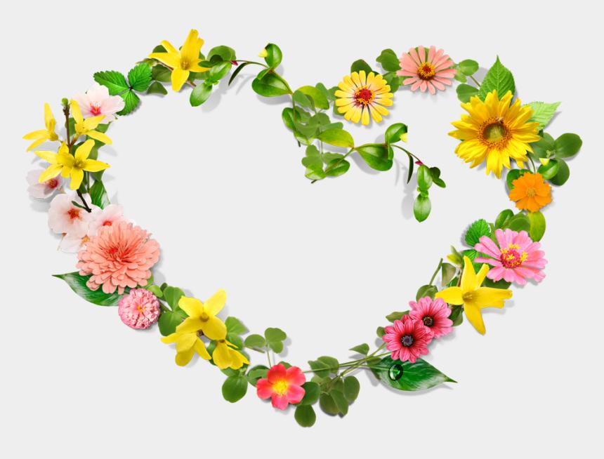 alice in wonderland clip art borders, Cartoons - Flower Heart Wreath Clip Art - Flower Heart Border Png