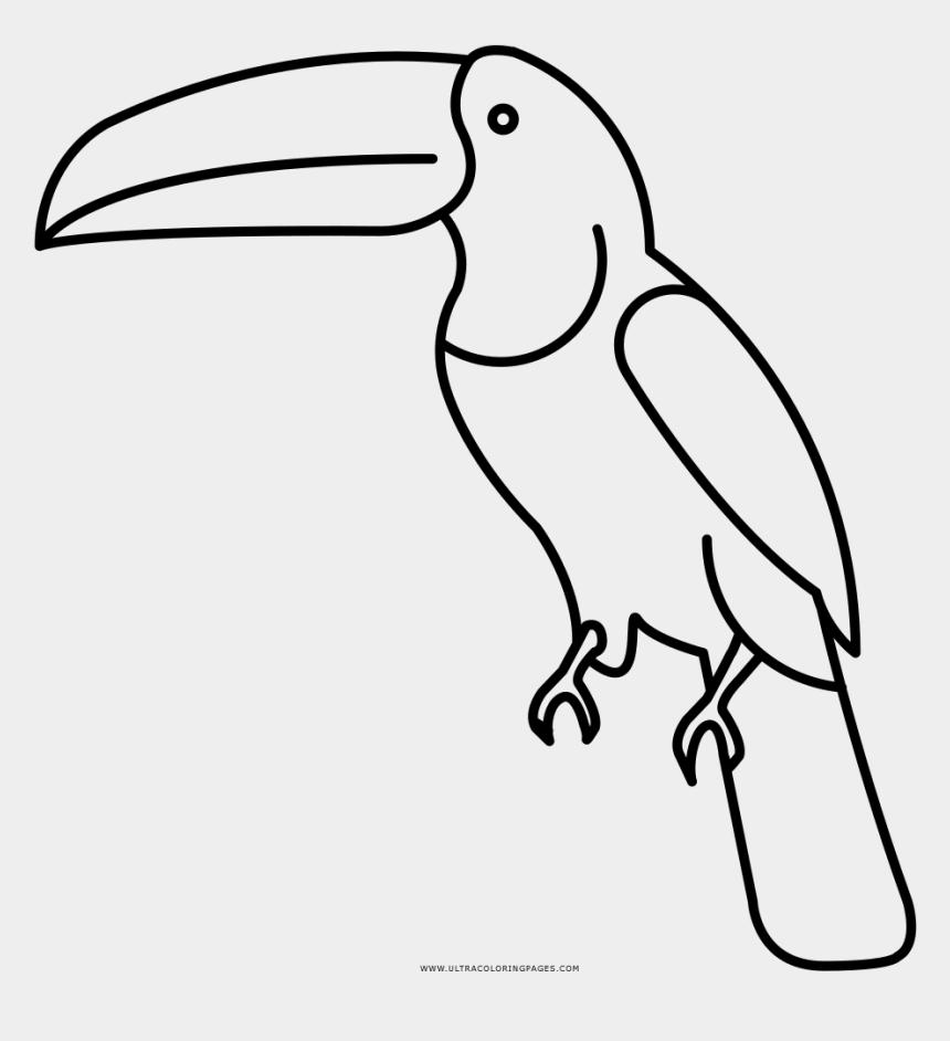 toucan clip art, Cartoons - Toucan Coloring Page - Dibujos Para Pintar De Un Tucan