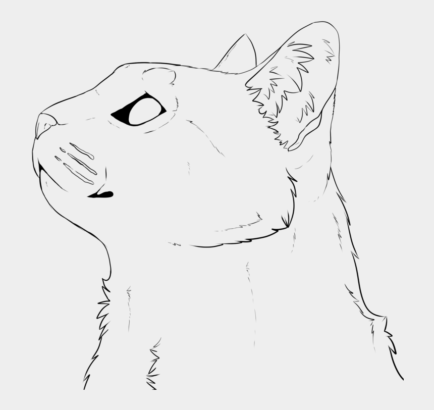 Drawing Barns Cat Realistic Cat Face Lineart Cliparts