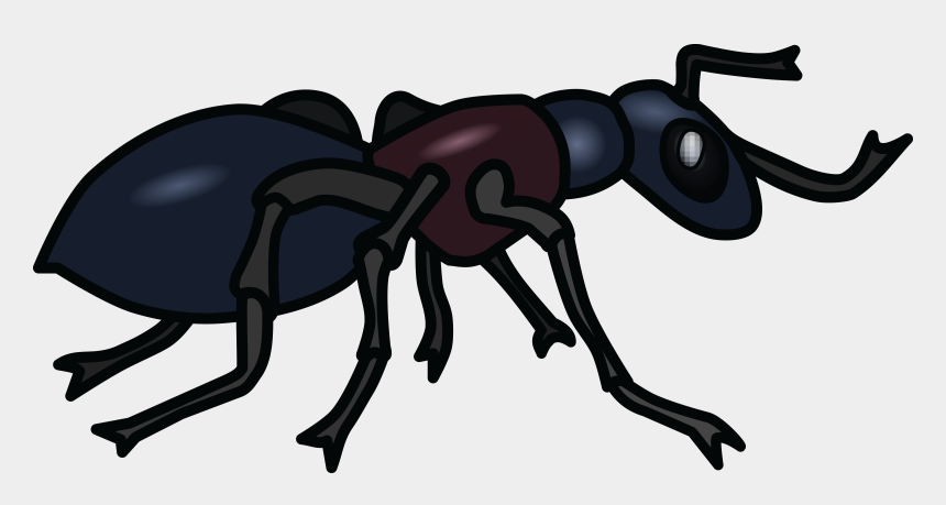 ant clipart, Cartoons - Ant Clipart Png - Ant Clip Art Black And White