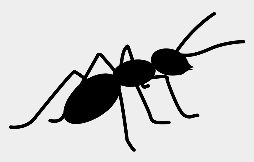 ant clipart, Cartoons - Ants Png Images Free Download Ⓒ - Ants Icon Png