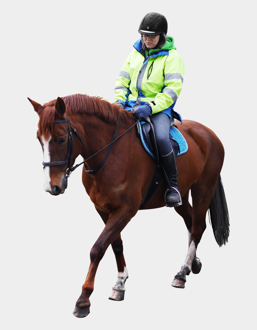 riding horse clipart, Cartoons - Horse Riding Png Image - Horse Riding No Background