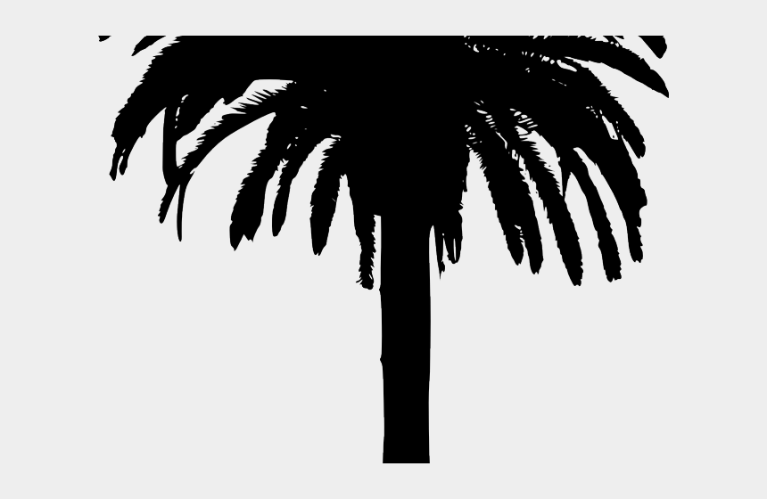 bamboo clipart, Cartoons - Bamboo Clipart Island Border - Date Palm Tree Silhouette