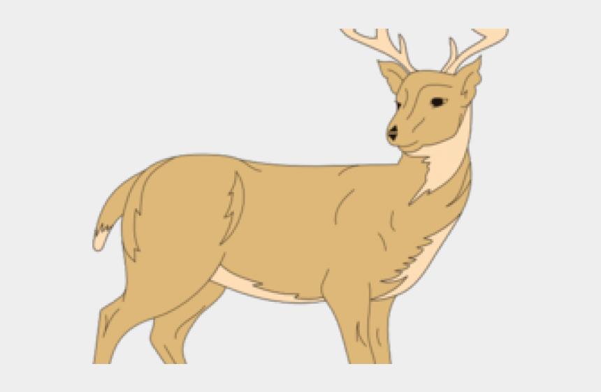 deer clipart, Cartoons - White Tailed Deer Clipart Rusa - Animasi Deer