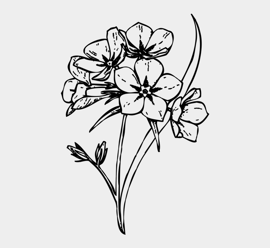 cut clipart black and white, Cartoons - Floral Design /m/02csf Cut Flowers Drawing - Flowers Drawing Png