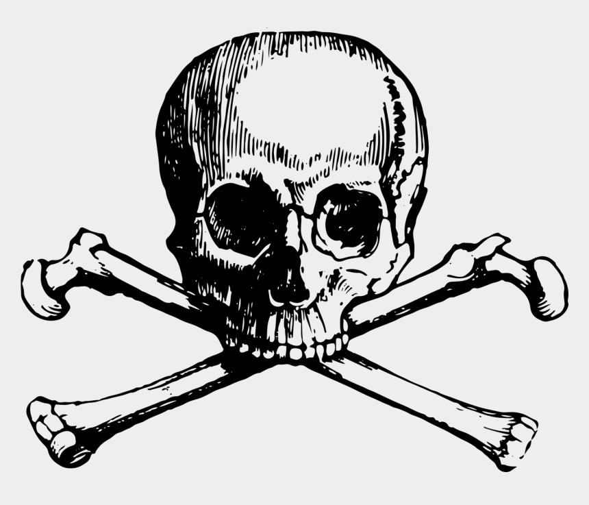 free skull and crossbones clip art, Cartoons - Skull And Bones Skull And Crossbones Clip Art - Skull N Bones Png