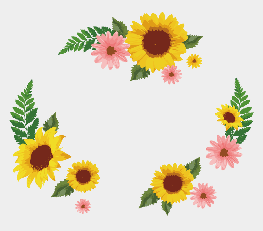 daisy clipart, Cartoons - Common Sunflower Euclidean Icon Decorative Box Transprent - Portable Network Graphics