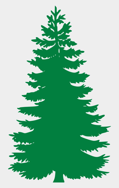 snow clipart, Cartoons - Pine Tree Clip Art Png