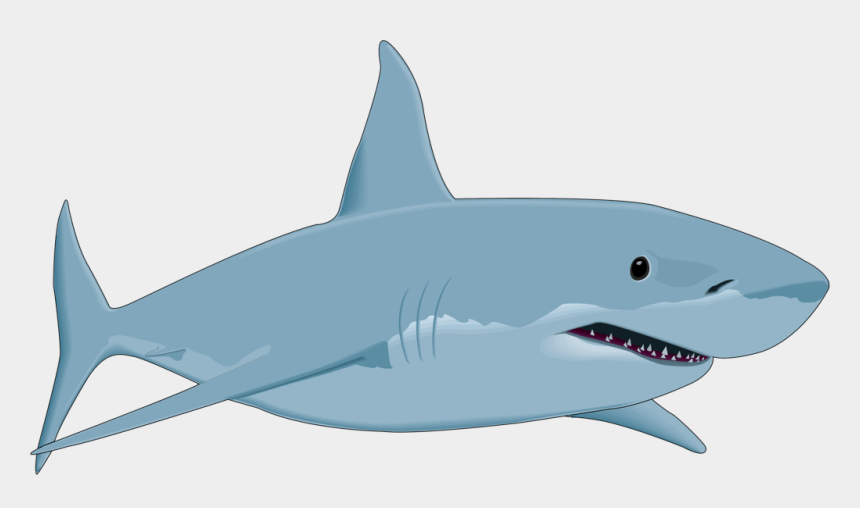 Shark transparent background. Clipart great white animated