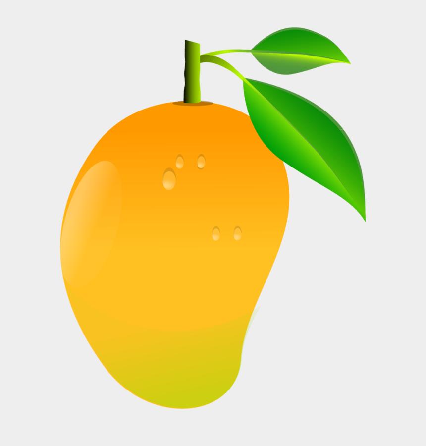 Mango Fruit Clipart Png Mango Clipart Png Cliparts Cartoons Jing Fm
