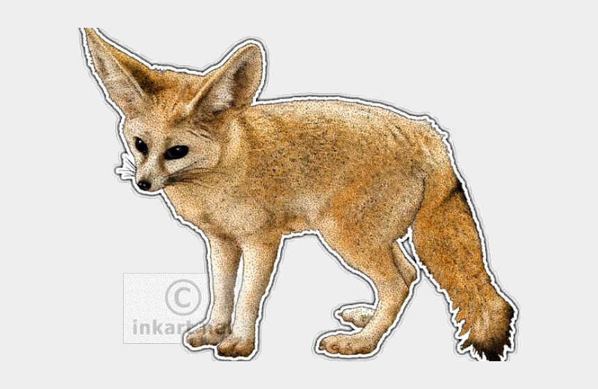 fox clipart, Cartoons - Fennec Fox Clipart Easy Drawing - Arctic Fox Scientific Illustration