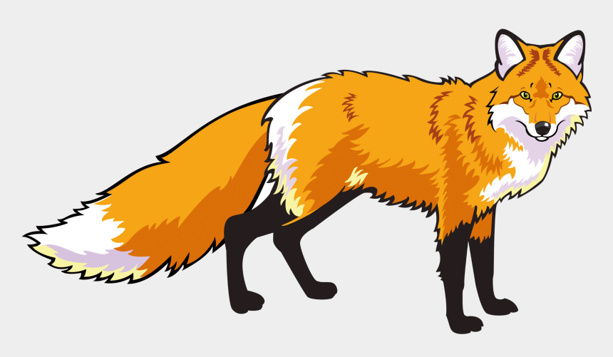 fox clipart, Cartoons - Red Fox Clipart Mammal - Лиса На Прозрачном Фоне