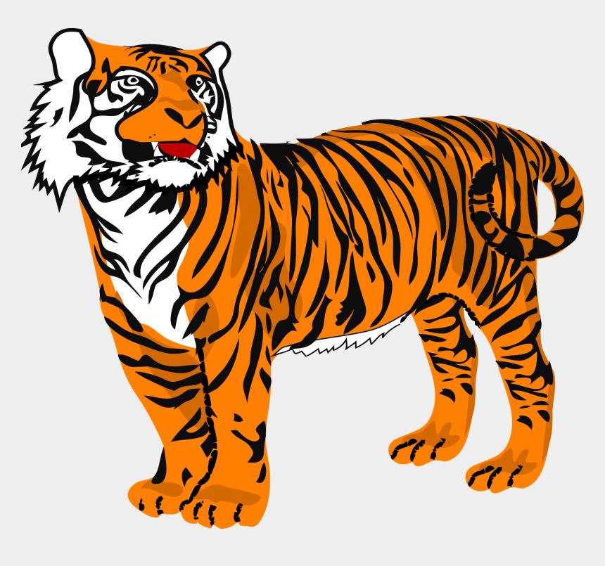 tiger clipart, Cartoons - Bengal Tiger Png - Tiger Clipart Png