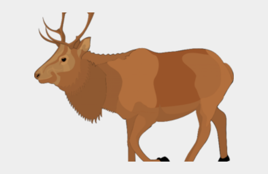 moose clipart, Cartoons - Free Moose Clipart - Animated Elk