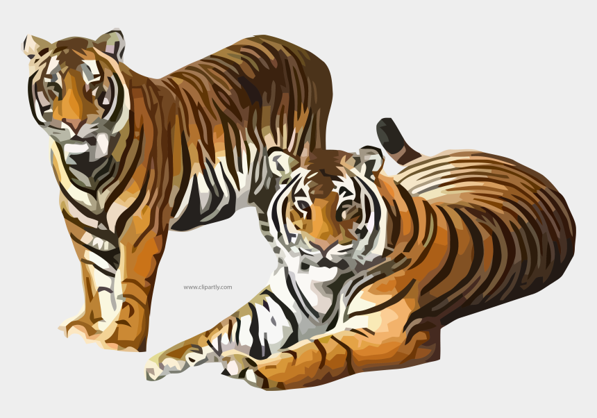 tiger clipart, Cartoons - Two Tiger Waiting Clipart Png Image Download - Siberian Tiger