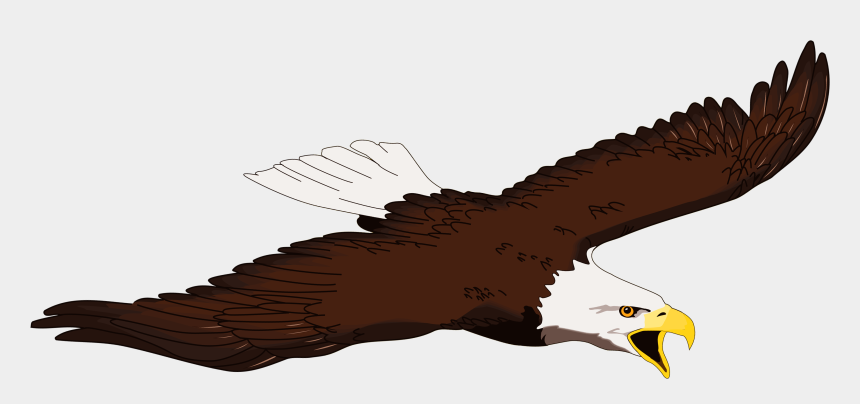 eagle clipart, Cartoons - Eagle Clipart Free Clipart - Bald Eagle