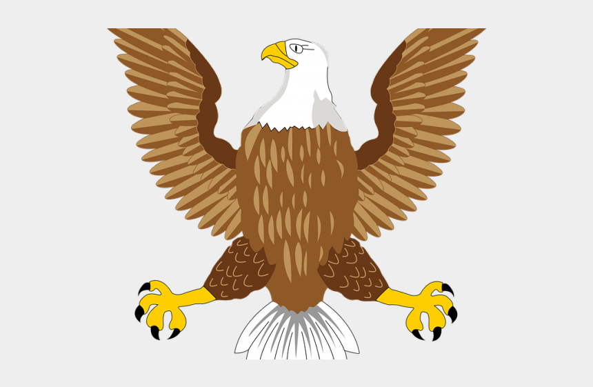 eagle clipart, Cartoons - Golden Eagle Clipart Dead Eagle - Usa Bald Eagle Symbol